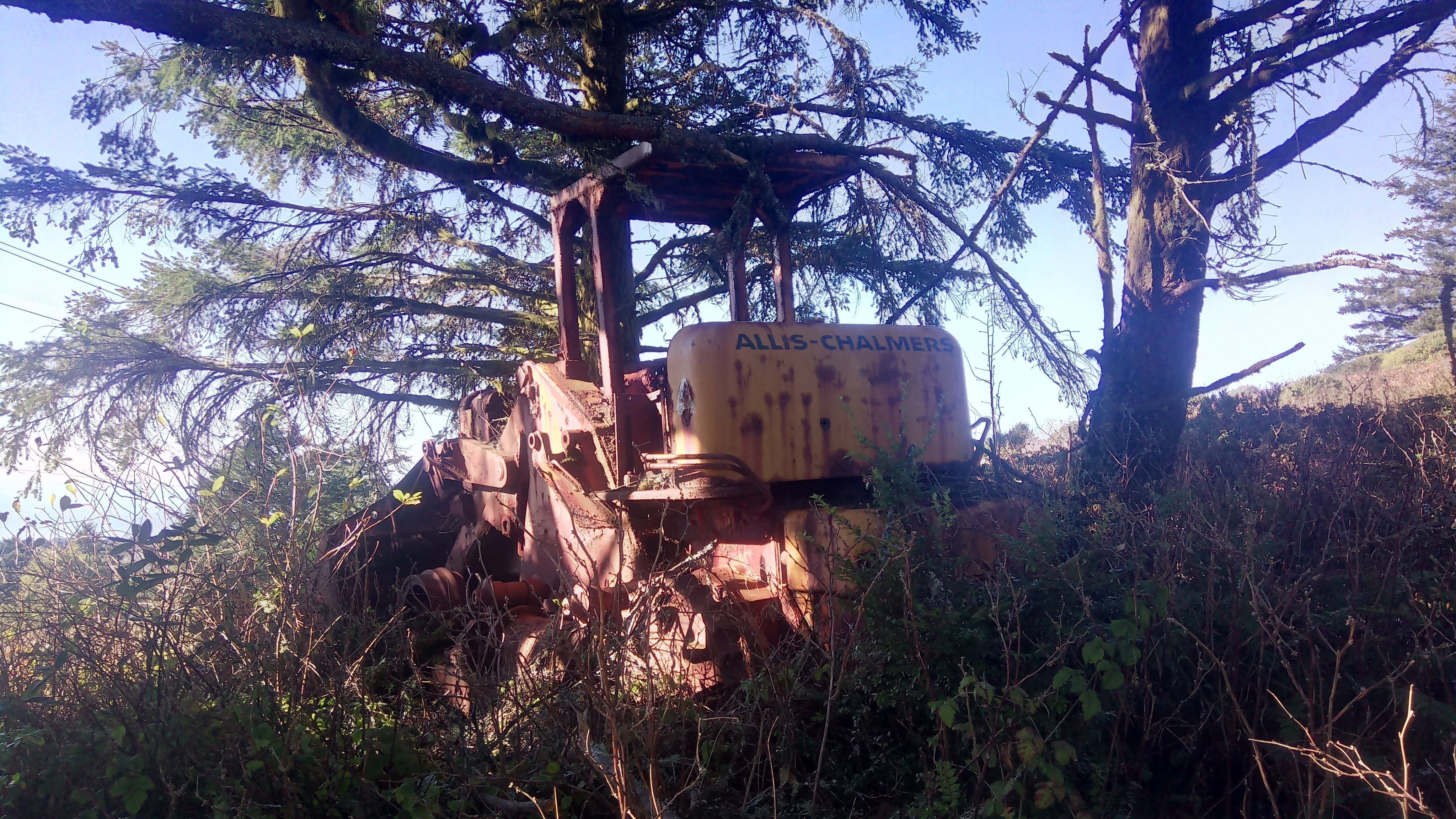 An abandoned tractor